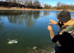 canna trout area piegata